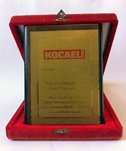 Naci Girginsoy Ödülü